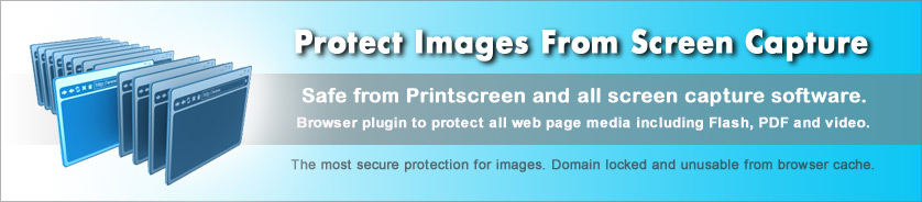 Copy Protection for Images, Web Pages and Web Media